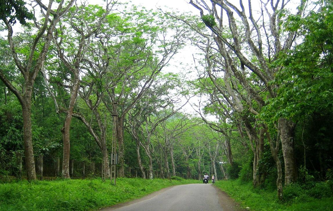 USAID khởi động hai dự án mới về bảo vệ môi trường nhằm giúp Việt Nam ứng phó biến đổi khí hậu