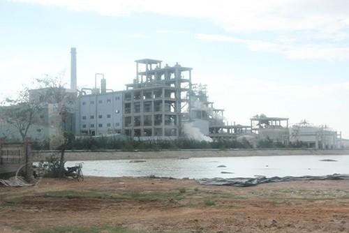 Nhà máy xả thải làm chết cá ở Quảng Nam bị dừng hoạt động