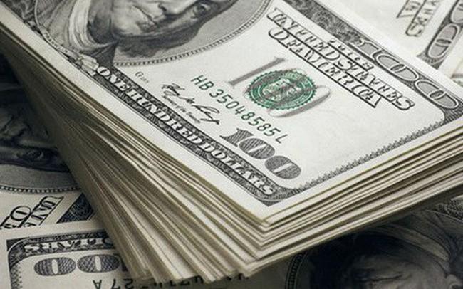 Vận chuyển trái phép 40.000 USD, bị tịch thu 35.000 USD, đóng phạt 1 tỷ đồng