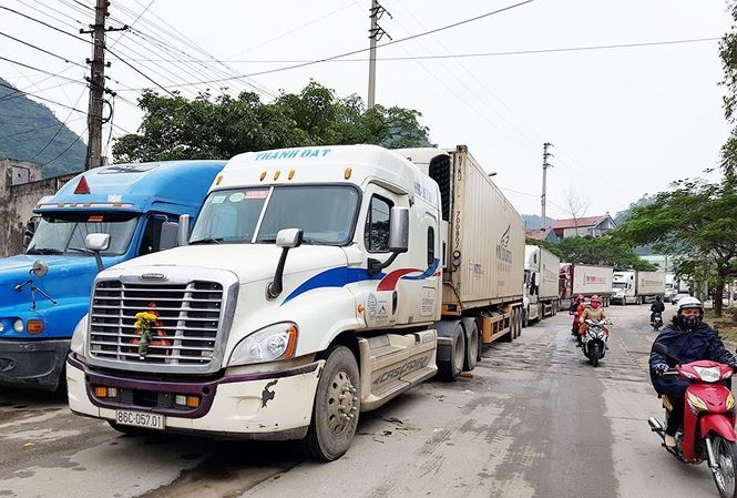 """Doanh nghiệp vận tải lo """"mất khách"""" trước áp lực giá xăng dầu"""