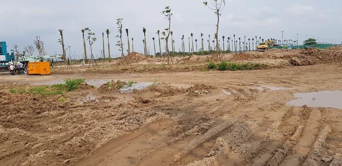 Hưng Yên phạt nặng doanh nghiệp tự ý san lấp 2,7ha đất trồng lúa