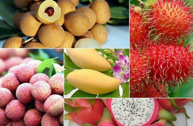 Xuất khẩu rau quả kỳ vọng cơ hội mới