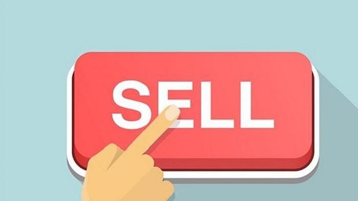 Thoái bớt 20 triệu cổ phiếu, Pyn Elite Fund không còn là cổ đông lớn tại Tasco (HUT)