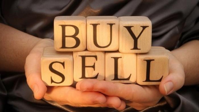 Thaco đăng ký bán gần 57 triệu cổ phiếu HVG, giảm tỷ lệ sở hữu còn 1,36%