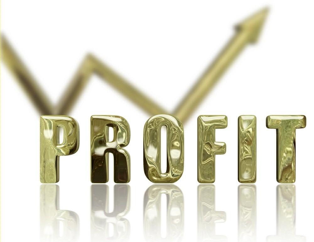 """Doanh nghiệp nào lỗ, lãi """"khủng"""" nhất thị trường 2013?"""