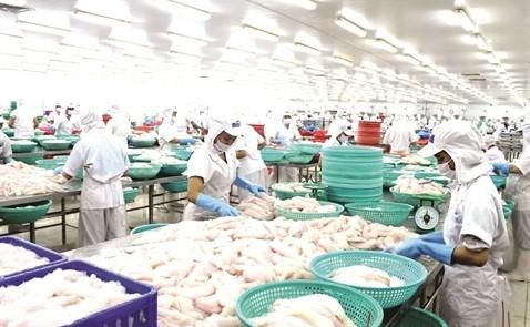 Cá tra Việt tìm thị trường mới