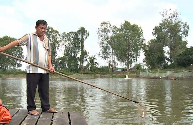 Người nuôi cá tra được cứu sau vụ sếp công ty thủy sản đi nước ngoài