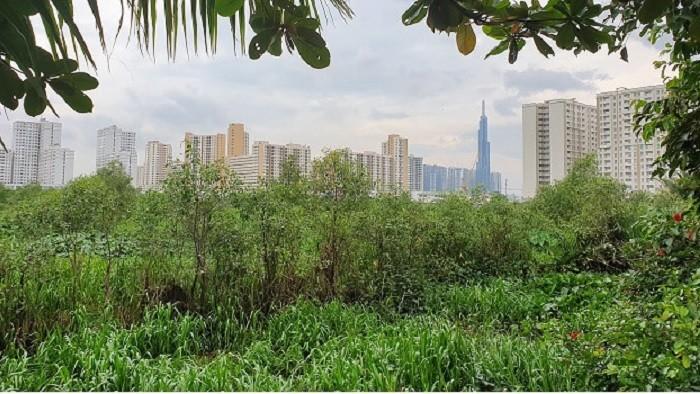 TP.HCM: 71,4% dự án nguồn gốc đất nông nghiệp được công nhận chủ đầu tư hết hiệu lực thi hành