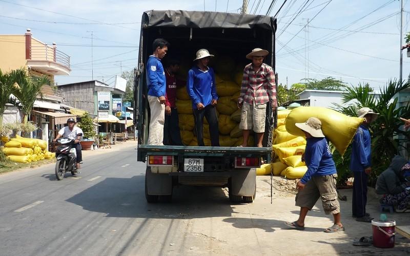 Gạo xuất khẩu của Việt Nam trên đường đua với các đối thủ
