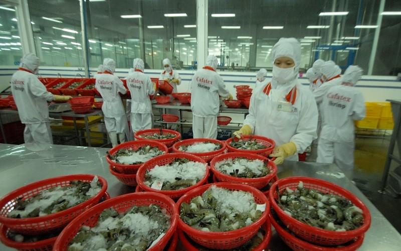 VASEP khẩn thiết xin đăng ký 500.000 liều vaccine cho công nhân, lao động