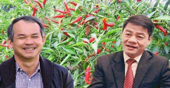 """Thaco đã """"rót"""" bao nhiêu tiền vào Nông nghiệp Quốc tế Hoàng Anh Gia Lai?"""
