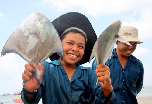 Ngư dân Bà Rịa -Vũng Tàu kiếm tiền triệu sau vài giờ bắt cá chim