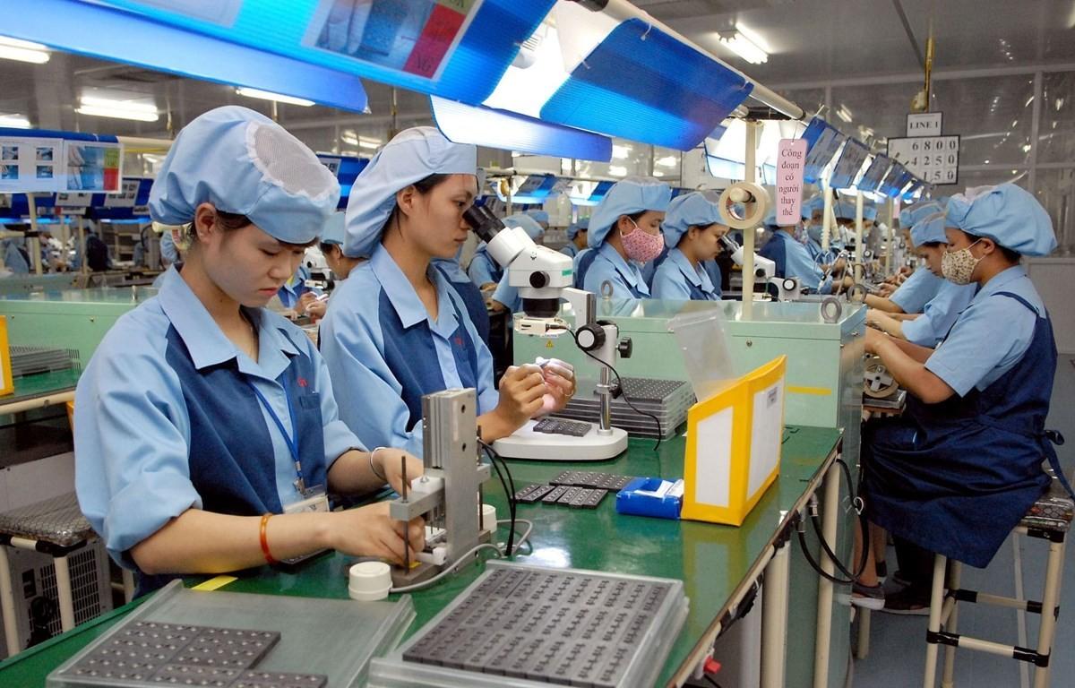 Phát triển thị trường lao động, hướng đến việc làm bền vững