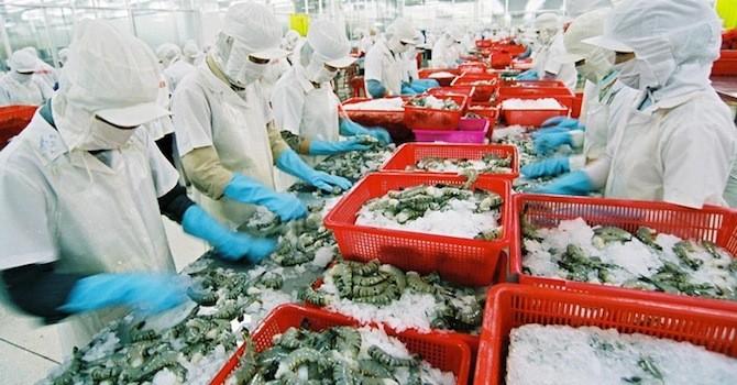 Dự báo xuất khẩu thuỷ sản 6 tháng cuối năm đạt 5 tỷ USD