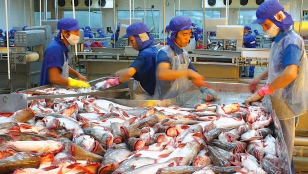 Kim ngạch xuất khẩu thuỷ sản tiếp tục giảm 10% trong tháng 6