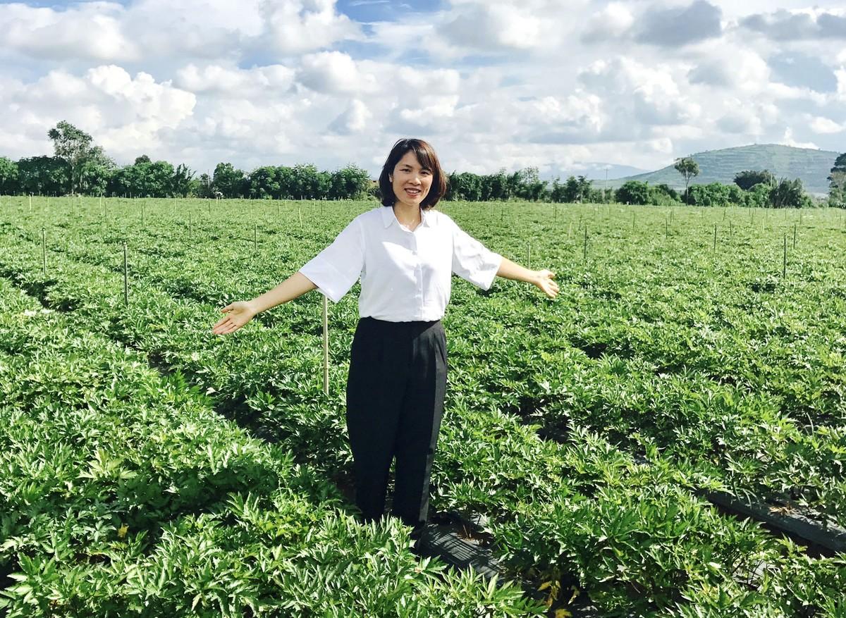 Nữ doanh nhân quyết đưa Việt Nam thành vùng dược liệu của thế giới, lấy lại thị phần nội từ Trung Quốc