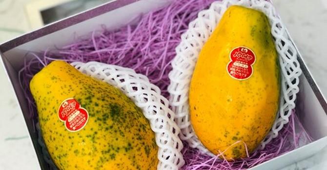 Thị trường 24h: Chi tiền triệu ăn đu đủ mini Nhật