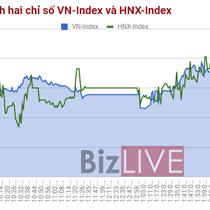 Chứng khoán chiều 25/10: Nhiều cổ phiếu lớn tích cực, VN-Index về lại 830