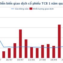 Techcombank lợi nhuận tăng 60% nhờ trích lập thấp và thu từ đầu tư dài hạn tăng mạnh trong 9 tháng