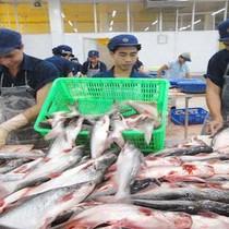 Giữa lúc giá cổ phiếu phục hồi, thuỷ sản Hùng Vương sẽ bán ra 5 triệu cổ phiếu quỹ