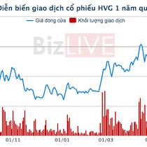 Doanh thu sụt giảm mạnh, thuỷ sản Hùng Vương báo lỗ 129 tỷ đồng trong quý III/2019