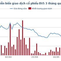 ĐHĐCĐ BVSC: Đặt kế hoạch lợi nhuận 134 tỷ đồng theo kịch bản VN-Index đạt 1.100 – 1.150 điểm