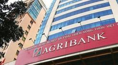 Tín dụng Agribank tăng trưởng âm trong 6 tháng đầu năm