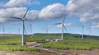 Tới 15/10, mới có 11 trong tổng số 106 nhà máy điện gió được công nhận COD
