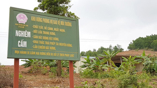 Vén màn 'bí ẩn' chủ những công trình trái phép trên đất rừng ở xã Minh Phú - ảnh 1