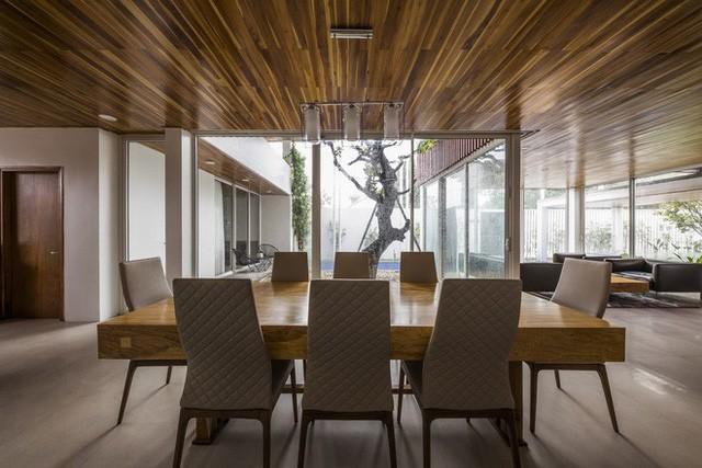 Độc đáo căn nhà ở Huế có thể nhìn xuyên thấu tất cả các phòng - Ảnh 11.