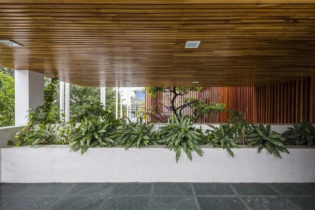Độc đáo căn nhà ở Huế có thể nhìn xuyên thấu tất cả các phòng - Ảnh 9.