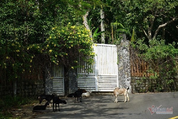 2 khu biệt thự ở bán đảo Sơn Trà bị đề nghị điều tra