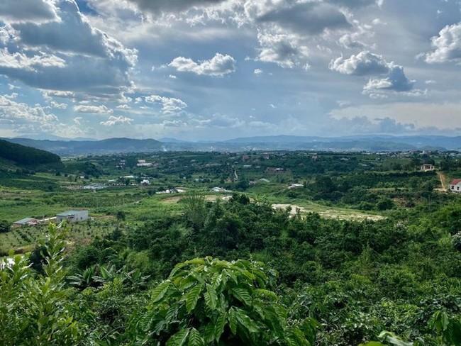 Phân lô đất nền tự phát gắn mác khu nghỉ dưỡng Lâm Đồng - ảnh 1