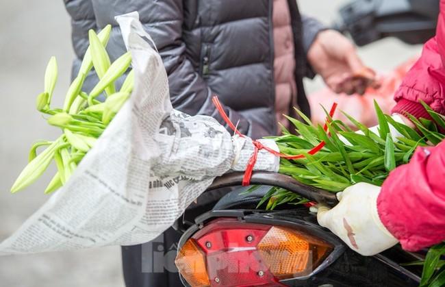 Người trồng hoa Hà Nội lâm cảnh 'hoa cười người khóc' - ảnh 11