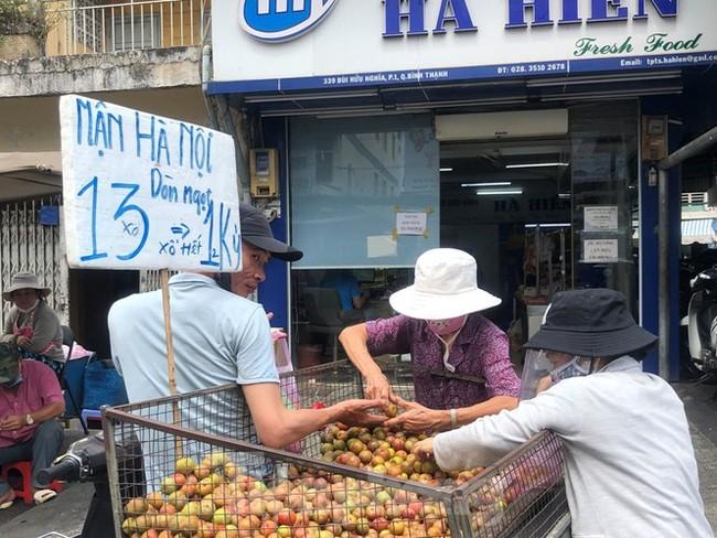 Mận Hà Nội vào Sài Gòn, giá 'loạn cào cào' - ảnh 4
