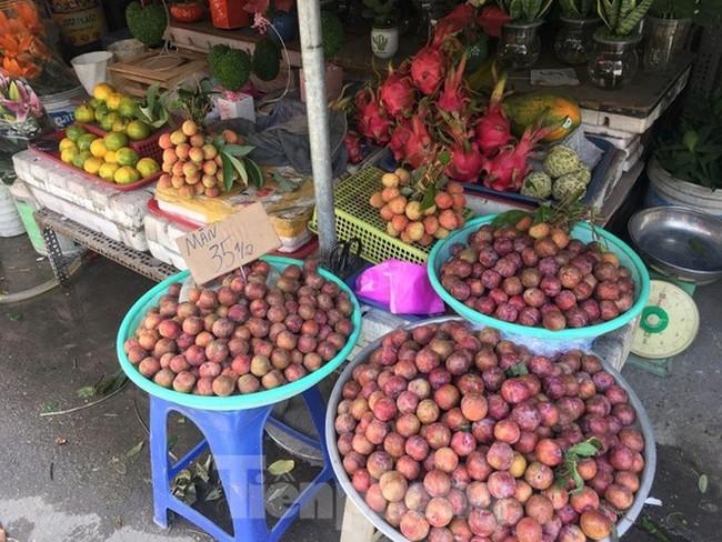 Mận Hà Nội vào Sài Gòn, giá 'loạn cào cào' - ảnh 8
