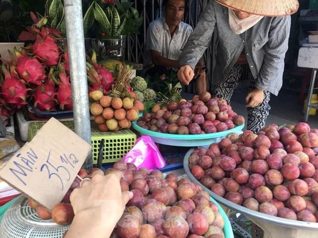 Mận Hà Nội vào Sài Gòn, giá 'loạn cào cào' - ảnh 7