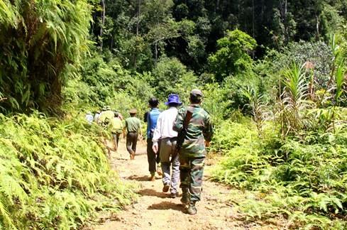 """Hiện trường vụ phá rừng Pơmu ở biên giới Việt – Lào: """"Quá khủng khiếp!"""" 8"""