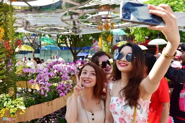 Chua het Tet, hang tram chau hoa bi dap nat o duong hoa Nguyen Hue hinh anh 2 duong_hoa_mong_3_tet_3_zing.JPG