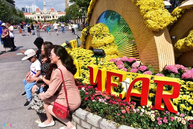 Chua het Tet, hang tram chau hoa bi dap nat o duong hoa Nguyen Hue hinh anh 3 duong_hoa_mong_3_tet_4_zing.JPG