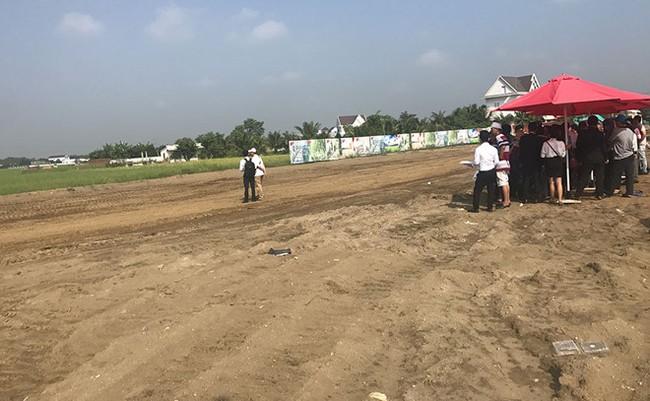 Bán đất TP.HCM nhưng Công ty cổ phần địa ốc Nam Phong Sài Gòn đưa khách xuống Long An bán đất nền phân lô Ảnh: Đ.S