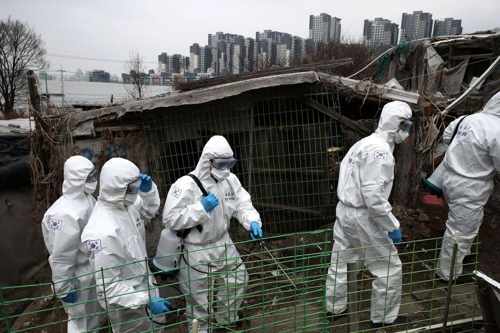 Hàn Quốc muốn dành hơn 11 nghìn tỷ won hỗ trợ doanh nghiệp khi dịch cúm corona căng thẳng