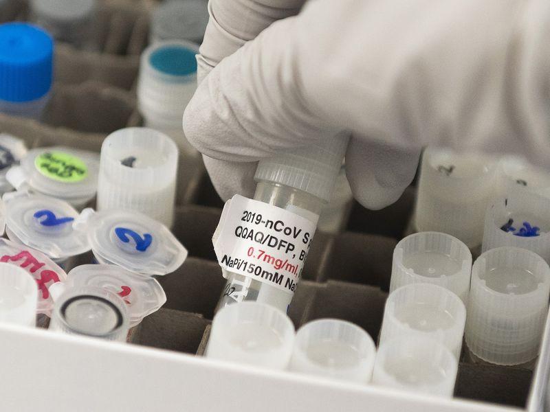 WHO công bố có ít nhất 70 loại vắc xin ngăn Covid-17 đang được nghiên cứu trên toàn cầu