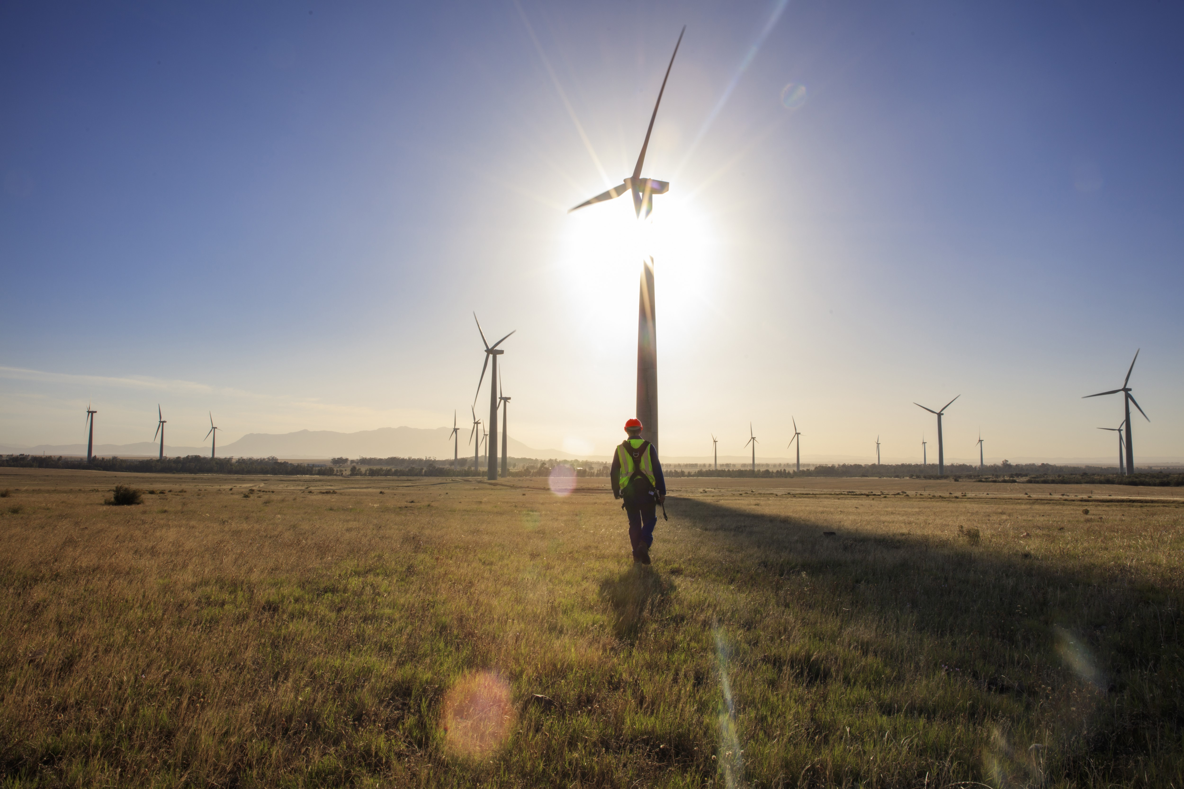 HSBC Blows its Green Support to Wind Energy Sector of Vietnam