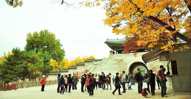 Sau dịch MERS, Hàn Quốc tìm cách thu hút du khách Việt