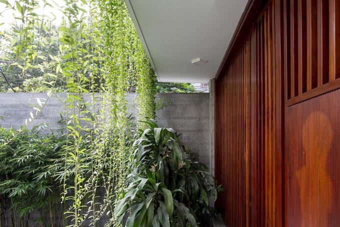Mảnh đất trũng, méo ở Hà Nội biến thành biệt thự xanh mướt