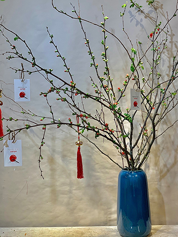 Một bình hoa đàoankaneboke từ Nhật Bản màu đỏ cam tại một cửa hàng hoa ở Hà Nội. Ảnh: Liti