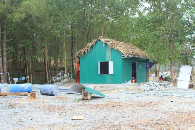 """Chủ rừng tự ý xẻ đồi xây khu sinh thái """"chui"""" trên đất lâm nghiệp? - ảnh 4"""