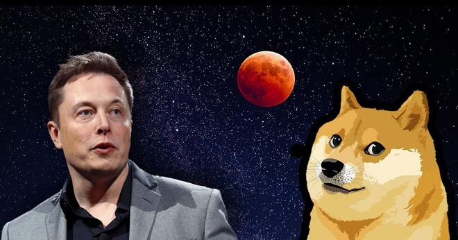 Elon Musk có thể bị điều tra vì thổi giá Dogecoin