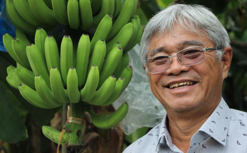 Bất chấp Covid-19, rau quả Việt Nam vẫn mở mới được nhiều thị trường